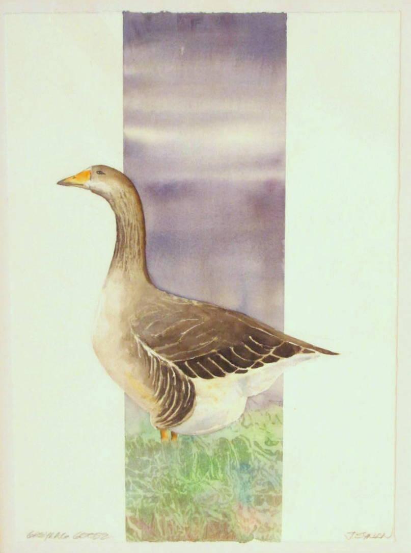 18 x 24 Greylag Goose