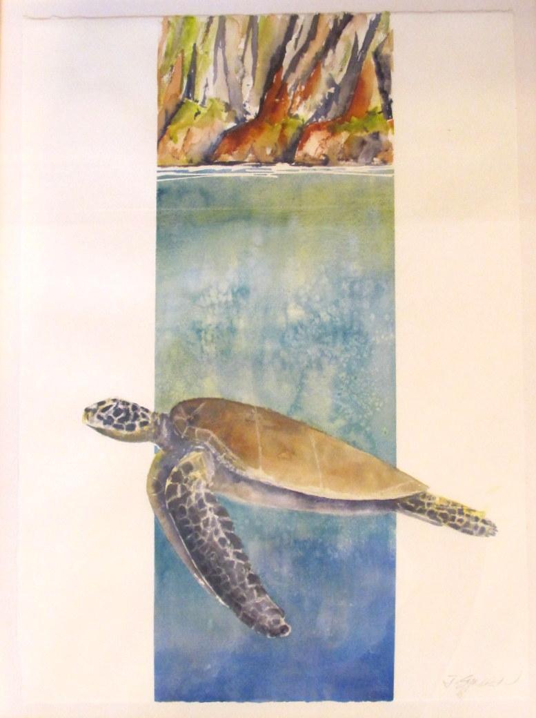 18 x 24 HawaianTurtle